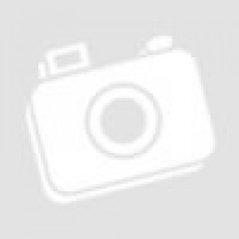 Электронный безмен Garin Точный вес DS4